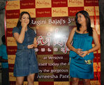 Amisha Patel with Raghini Bajaj at party launch of Nail spa held on 15th Oct, 2008 at Kino s cottage, Andheri