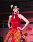 Models and stars at fashion week the Chennai International Fashion Week (22)