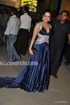 Celina Jaitely at the Filmfare Awards 2010 (2)