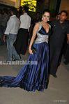 Celina Jaitely at the Filmfare Awards 2010 (2)