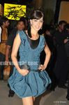 Genelia DSouza at the Filmfare Awards 2010 (3)