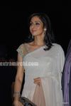 Sridevi at the Filmfare Awards 2010 (2)