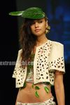 Iocoenet hemant Show Lakme India Fashion Week (3)
