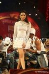 Stardust Awards (58)