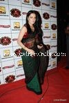bollywood celebrities at Stardust Awards (108)