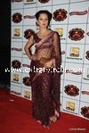 bollywood celebrities at Stardust Awards (112)