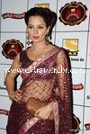 bollywood celebrities at Stardust Awards (113)