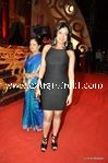 bollywood celebrities at Stardust Awards (20)