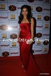 bollywood celebrities at Stardust Awards (39)