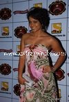 bollywood celebrities at Stardust Awards (40)
