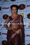 bollywood celebrities at Stardust Awards (65)