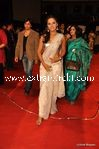 naathu chandra at Stardust Awards (3)