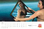 cloud nine bikini calendar 2010 pics (8)