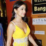 Shriya Saran at IIFA  Awards 2008