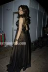 Diana Hayden at Society Interior Awards (2)