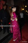 dia mirza at DR PK Aggarwal s daughter s wedding (4)