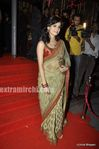 Dia Mirza at Laila Khan s wedding reception