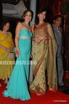 Dia Mirza at Laila Khan s wedding reception (3)