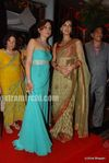 Dia Mirza at Laila Khan s wedding reception (4)