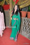 celina jaitley at wedding of Mushtaq Sheikh sister Najma picture