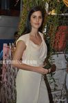 katrina Kaif at wedding of Mushtaq Sheikh sister Najma (1)