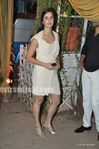 katrina Kaif at wedding of Mushtaq Sheikh sister Najma (5)