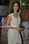 katrina Kaif at wedding of Mushtaq Sheikh sister Najma (7)
