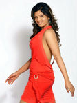 Actress Ramba Photo Shoot (3)