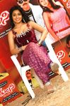Actress Shreya