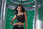Vedika in Sakkarakatti Movie