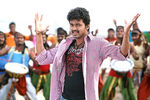 Vijay and Anushka Shetty in Vettaikaran Movie (3)