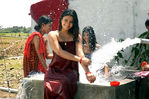 Poonam Bajwa in Seval Movie