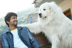 Vijay at Villu Shooting spot