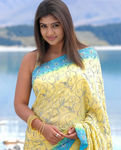Sensational Nayantara - the highest paid actress in South India