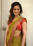 Richa Pallod - Indian model cum Actress