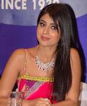 Shriya at a function