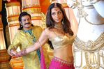 Actress Tabu in Panduranga