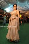 Stars at IIFA Awards Green Carpet