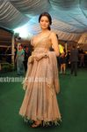 Stars at IIFA Awards Green Carpet (2)