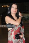 Celina Jaitley at Egyptian Diplomat s bollywood Exhibition