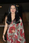 Celina Jaitley at Egyptian Diplomat s bollywood Exhibition (4)