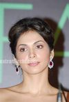 Isha Koppikar at launch of India s International Face 2010 (1)