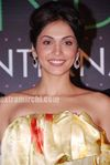Isha Koppikar at launch of India s International Face 2010 (4)