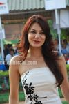 Minissha Lamba at HDIL race photos (11)