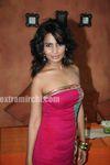 Rachana Shah (21)