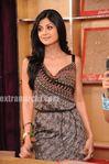 Shilpa Shetty at teh star parivaar red carpet