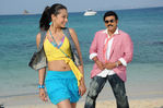 Venkatesh with Trisha in NamoVenkatesha