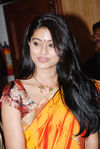 Beautiful Sneha in silk saree (2)