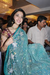 Tamanna in saree (2)