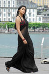 Shriya Saran (30)